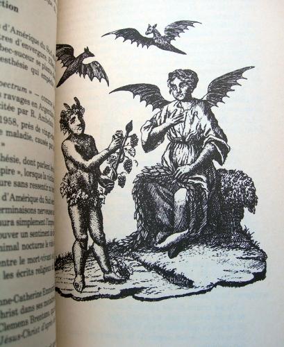 Jean-Paul BOURRE, Vampires, vampirisme, sorcellerie, occultisme, ésotérisme, mythes et légendes, fantastique, Vlad Tepes